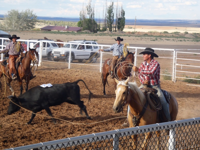 San Juan Ranch Roping 2014- Monticello, UT